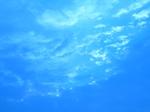 今日の鵠沼 018.jpg